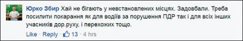 bot-Avakov2