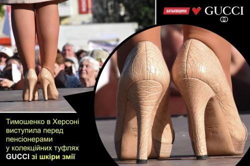 Timoshenko-zmeya2